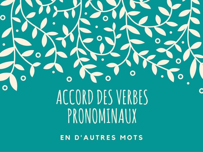 L'accord des verbes pronominaux, en d'autresmots